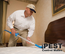 bed_bug_control_01